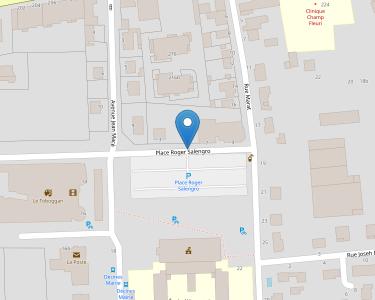 Adresse CCAS DE DECINES-CHARPIEU