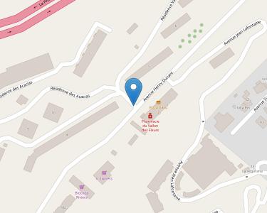 Adresse Caf des Alpes-Maritimes - MSAP Nice