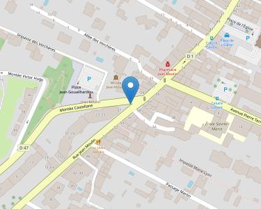 Adresse CCAS DE CALUIRE-ET-CUIRE